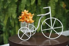 Mini Bicycle Basket Metal Wire Art Decor Vehicle Flower Home Collectible Garden