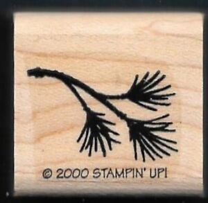 PINE TREE BRANCH Realistic Nature FIR NEEDLES Stampin' Up! 2000 RUBBER STAMP