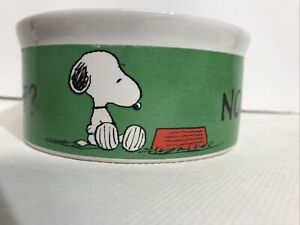 Peanuts Snoopy Pet Food Water Bowl Now What? More Please! Dog or Cat Size