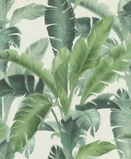 Rasch Barbara Home Collection Banana Palm Wallpaper 536683 Green