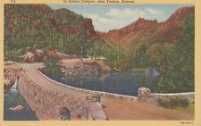 Postcard Curteich A583 In Sabino Canyon near Tucson Arizona AZ Ariz Lollesgard
