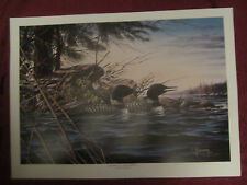 LOON wildlife art print MINNESOTA MEMORIES II - Dean Johnson - Unsigned