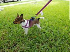 Fashion Pink Adjustable Nylon Dog Harnes And Leash ... Set Of 2 Pcs