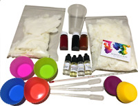 Wax Melt Tart Candle Kit DIY Make Your Own Starter Set Eco Soy Fruity set #2