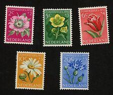 1952 Nederland Netherlands Semi Postal Stamp #B238-B242 MINT F+, H or HR