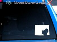 Colorado Wild Turkey Hunting State Vinyl Decal Sticker / Color - HIGH QUALITY