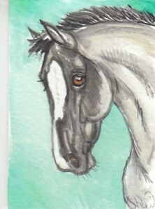 ACEO original Watercolor Art Card Horse blue roan yearling mare blaze face pony