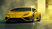 "2020 Lamborghini Huracan EVO RWD Auto Car Art Silk Wall Poster Print 24x36"""
