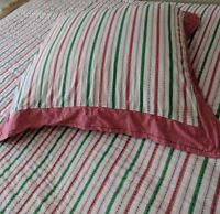 Anthropologie Queen Bed Quilt European Sham + Matching Bag Pink Green Raspberry