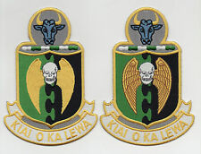 USAF Patch 5th BOMBARDMENT WING - LARGE - OLD STYLES Ver 1 & 2, REUNION