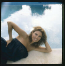 RAQUEL WELCH Stunning Glamour pin up by pool Original Photo TRANSPARENCY Slide