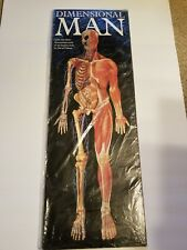 Dimensional Man/Life-size Anatomical pop-up Wall Chart New sealed in plastic