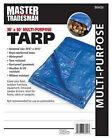 Blue Polyethylene Tarp, 30 x 50-Ft.