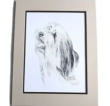 Bearded Collie Lyn St Clair Numbered Signed Print Pen Drawing Dog Sketch Vintage