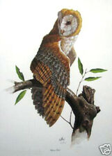Barn Owl by Don Balke; Signed & Numbered Print