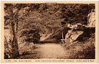 CPA 63 - LAC PAVIN (Puy de Dôme) - 168. Allée Sous Bois (rive ouest). Dolmen,...
