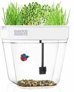Back to the Roots Water Garden Mini Ecosystem - Self-Cleaning Fish Tank - 3 Gal.