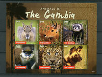 Gambia 2015 MNH Animals of Gambia 6v M/S Wild Animals Leopards Monkeys Stamps