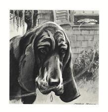 Bloodhound - Morgan Dennis Dog Print - Matted