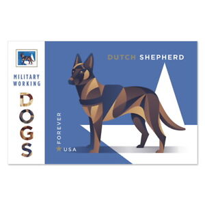 USPS New Military Working Dogs, Dutch Shepherd Print