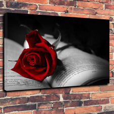 """Stunning Red Rose On A Book Printed Canvas Picture A1.30""""x20"""" 30mm Deep Frame"""
