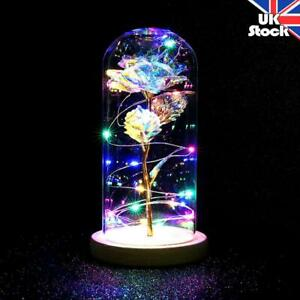 Enchanted Rose with LED Light in Glass Dome Wedding Party Valentine's Day Gifts