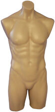 Adult Men's 3/4 Body Plastic Fleshtone Torso Mannequin Display Form with Thighs