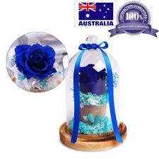 Preserved Immortal Fresh Rose Forever Rose Flower in Glass Festive Gifts