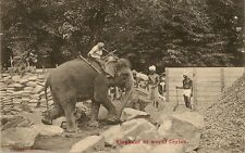 CARTE POSTALE ASIE SRI LANKA CEYLAN ELEPHANT AT WORK ELEPHANT AU TRAVAIL