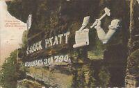 Prattsville, NEW YORK - Catskill Mountains - Pratt Rock - 1908