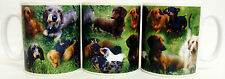 Dachshund Mug Ceramic Collage Dachshund Scenes Mug Hand Decorated in UK
