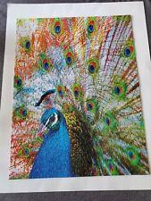 Springbok 500 pieces Jigsaw Puzzle Peacock Excellent