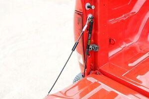 Dee Zee DZ43300 Tailgate Assist Fits 02-09 Ram 1500 Ram 2500 Ram 3500