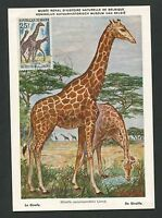 NIGER MK 1967 FAUNA GIRAFFE GIRAFE MAXIMUMKARTE CARTE MAXIMUM CARD MC CM d3714
