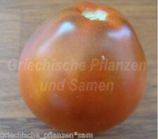 Carbon Tomate Tomate Black 10 fresh seeds Balcony Bucket