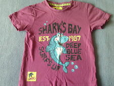 Boys 2-3 Years - Dark Pink T-Shirt with Shark Motif - TU