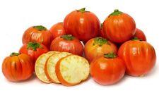 Eggplant - TURKISH ORANGE - 20 Heirloom Vegetable Organic Aubergine Seeds