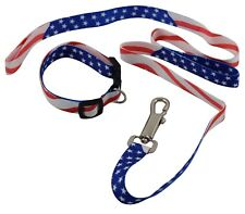 USA Patriotic American Military Memorial Labor Day Dog Collar and Leash Set