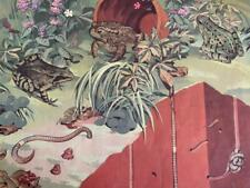 More details for frogs toad & earthworms brimble edwards macmillan's school poster retro 1950s