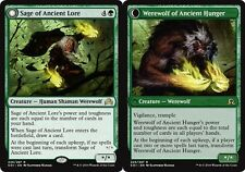 MTG: Sage of Ancient Lore // Werewolf of Ancient Hunger - Shadows over Innistrad