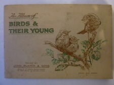 John Player Birds and their Young