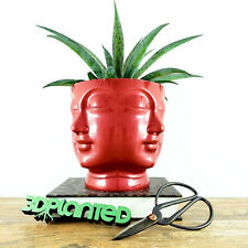 Concrete Faces Head Planter RED - Indoor/Outdoor Plant Pot - Succulent Planter