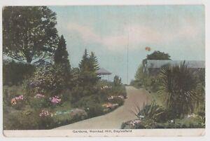 VICTORIA - Gardens, Wombat Hill, Daylesford vintage postcard, used 1905.