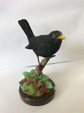 BLACKBIRD FIGURE (unknown brand) mounted