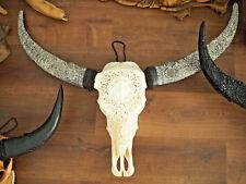 Echter Büffel Schädel,GESAMTBREITE 112cm!Schädel und Hörner handgefräst,Wanddeko