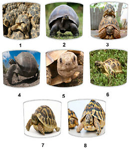 Tortoise Designs Lampshades, Ideal to Match Turtle Wall Decals & Stickers