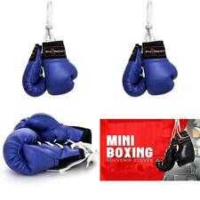 Pro Impact Mini Boxing Gloves - Miniature Punching Gloves
