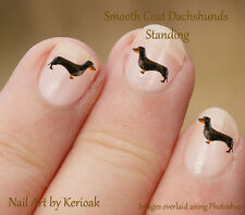Dachshund Standing,  Dog Nail Art Stickers Decals, Sausage dog, daxie, set of 24