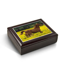 Mother and Baby Horse (Foal) In The Prairie Tile Musical Jewelry Box