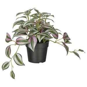 IKEA FEJKA Artificial Potted Plant Indoor & Outdoors Decoration Flora Spiderwort